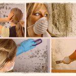 Как самим избавиться от плесени на стенах