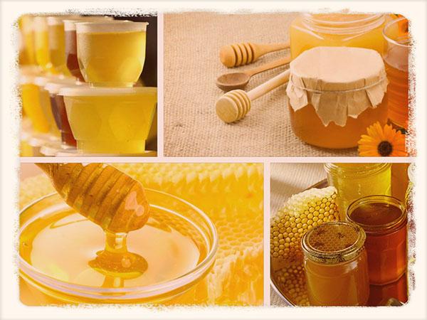 Как хранении мед в домашних условиях 190