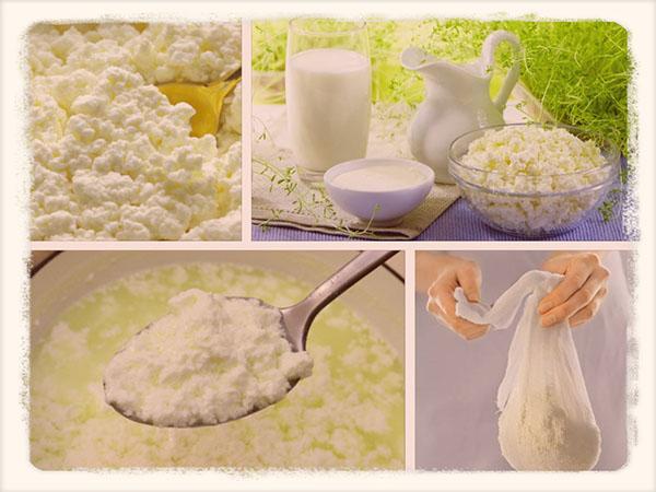 как сделать творог из молока в домашних условиях