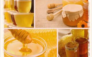 Как и сколько хранить мед в квартире