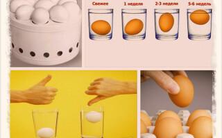 Как проверить свежесть яиц дома и в магазине