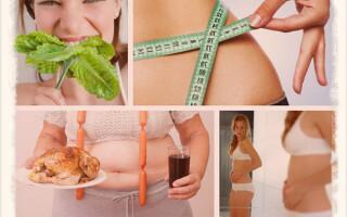 Как правильно питаться, чтобы убрать живот и бока