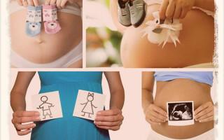 На каком сроке можно определить пол ребенка по узи
