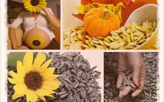 Можно ли беременным семечки