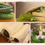 Как хранить свежие огурцы долго (+зимой)