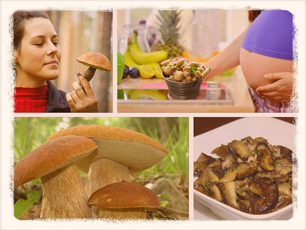 Можно ли беременным женщинам есть грибы
