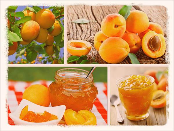 Готовим варенье из абрикосов без косточек: рецепт на зиму