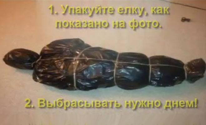 елка упакованная как тело